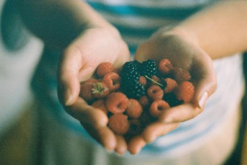 Berries - Free Stock Photo