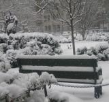 Free Photo - Gramecy Park in the winter