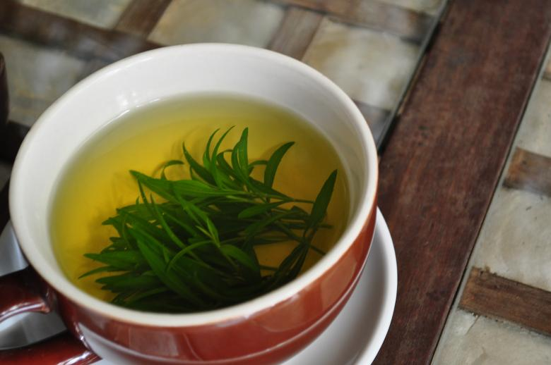 Free Stock Photo of Tarragon tea time Created by Eduardo Cleofe