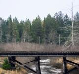 Free Photo - Railroad Bridge
