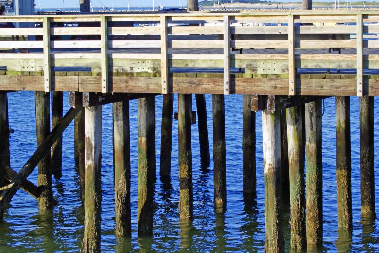 Free Stock Photo of Boardwalk Created by Brian Norcross