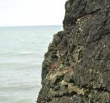 Free Photo - Rugged sea rocks