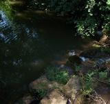 Free Photo - River of Life Obstacles