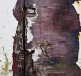 Free Photo - Grunge Wood Surface
