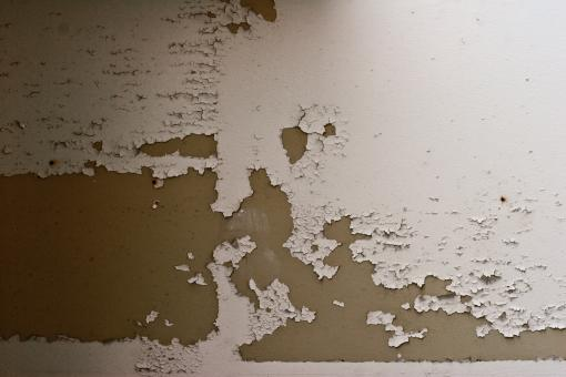 Peeled Paint Texture - Free Stock Photo