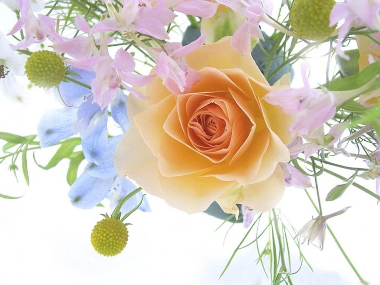 Spring bouquet with a rose - Free Floral Backgrounds