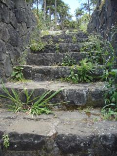 Stairs Free Photo