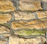 Free Photo - Bricks Texture