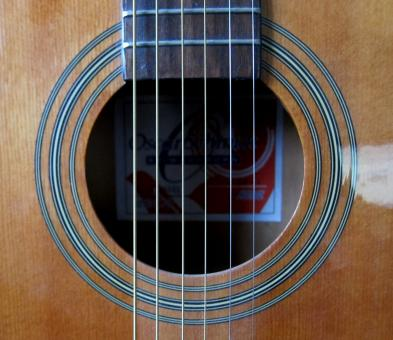 Acoustic Guitar - Free Stock Photo