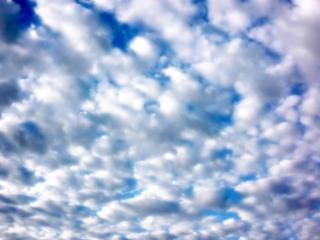 Clouded Morning Background Free Photo