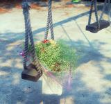 Free Photo - Flower on swing set