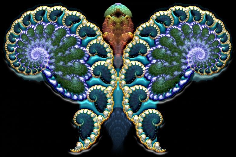 Free Stock Photo of Fractal Butterfly Created by Barbara Din