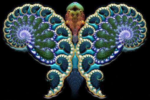Fractal Butterfly - Free Stock Photo