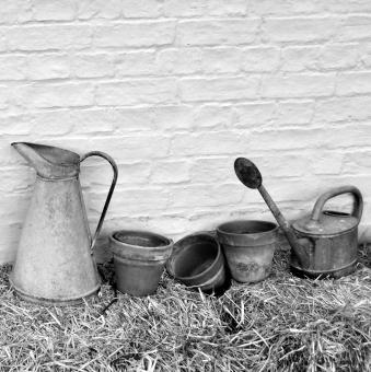 Pots & jugs  - Free Stock Photo