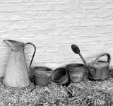 Free Photo - Pots & jugs