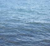 Free Photo - Water surface