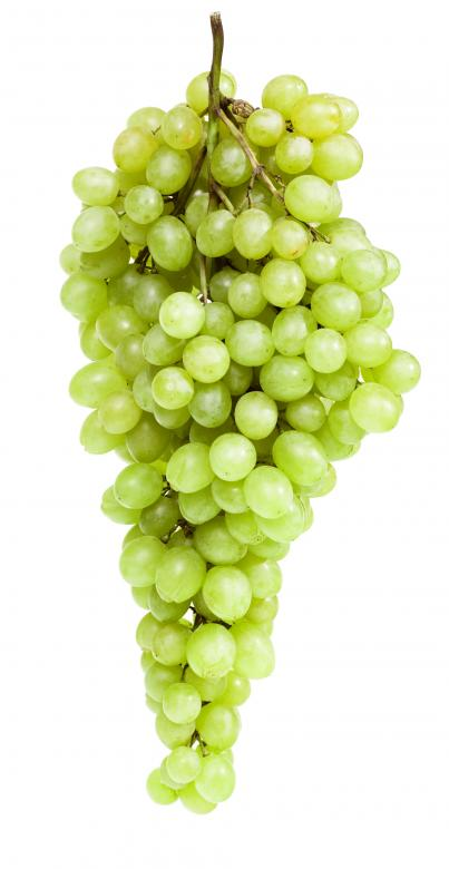 Free Stock Photo of Green Grapes Created by 2happy
