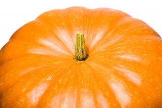 Download Pumpkin Free Photo