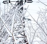 Free Photo - Icy Power Lines
