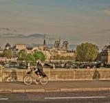 Free Photo - Bicycle Rider