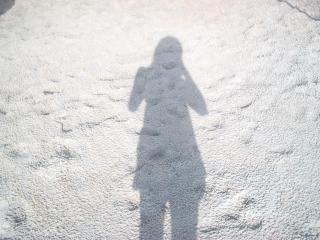 My Shadow Free Photo