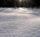 Free Photo - Snow on the ground