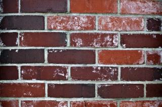 Download Dark Brick Wall Free Photo