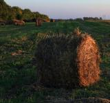Free Photo - haystack