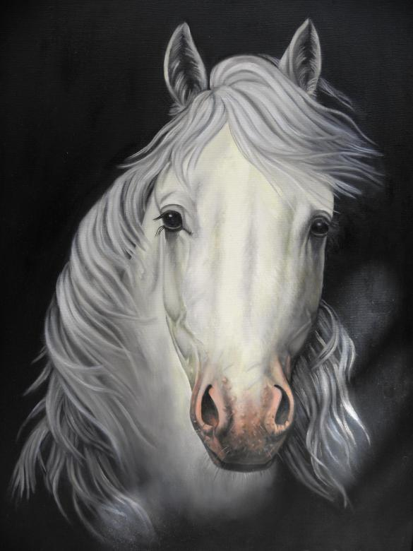 Free Stock Photo of Horse Painting Created by Yuliy Ganev