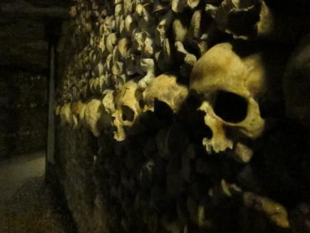 Remains - Catacombs - Free Stock Photo