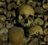 Free Photo - Remains - Catacombs