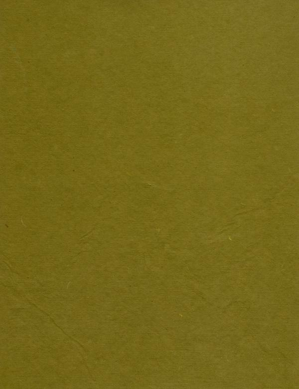 Free Stock Photo of Olive Green Paper Created by Rachael Towne