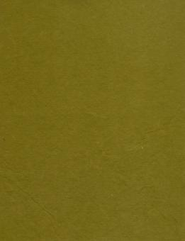 Olive Green Paper - Free Stock Photo