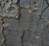 Free Photo - Cracked Texture