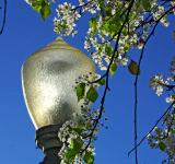 Free Photo - Outdoor light pole