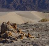 Free Photo - Desert Landscape