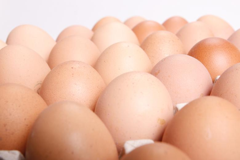 Free Stock Photo of Eggs Created by 2happy