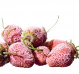 Free Photo - frozen Strawberry