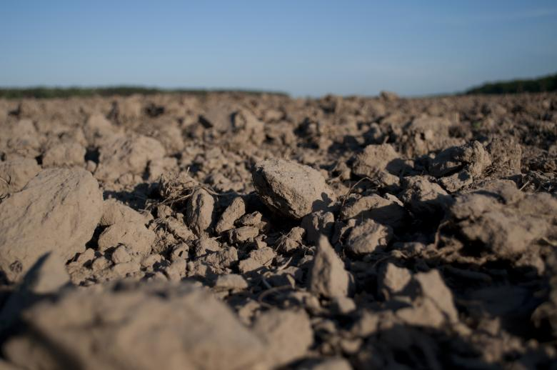 Free Stock Photo of Dirt Field Created by Berdnik Oleksander