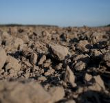 Free Photo - Dirt Field