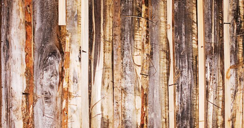 Free Stock Photo of wood background Created by 2happy
