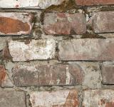 Free Photo - Old brick background