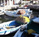 Free Photo - Fishermen boats