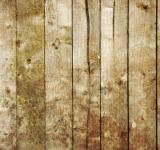 Free Photo - Grungy Wood Texture