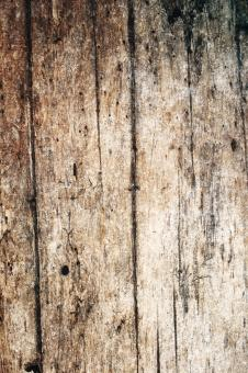 Grungy Wood Texture - Free Stock Photo