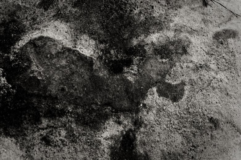 Free Stock Photo of Grunge Mud Texture Created by Bjorgvin