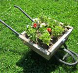 Free Photo - wheelbarrow