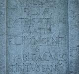 Free Photo - Latin words in stone