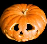 Free Photo - halloween pumpkin