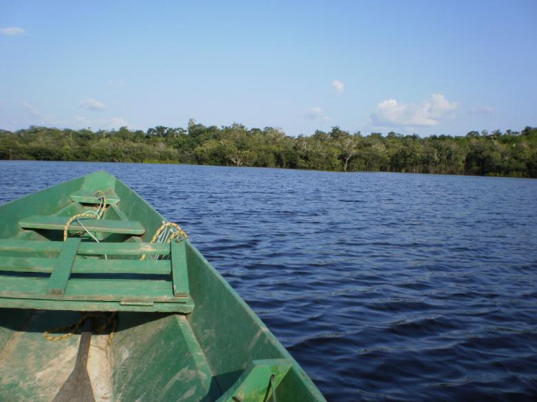 A small boat on amazon river Free Photo